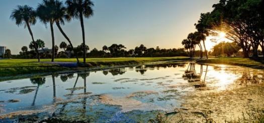 Edge of a golf course, Longboat Key Florida by Gavin Adams (creative commons)