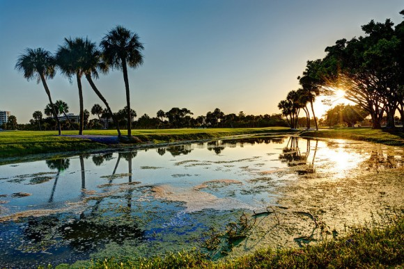 Edge of a golf course, Longboat Key Florida by Gavin Adams (creative commons)