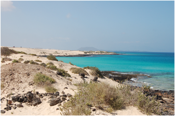 Fuerteventura, Canary Islands (creative commons)