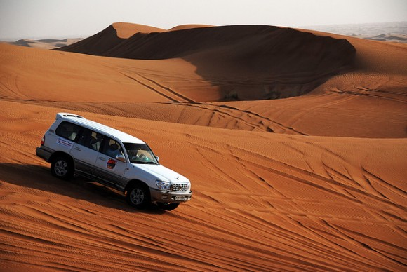 Desert Safari, Dubai by Robert Paul Young